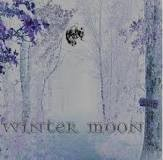 "v/a ""Winter Moon"""