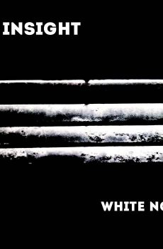 """Insight, The """"White Noise"""""""