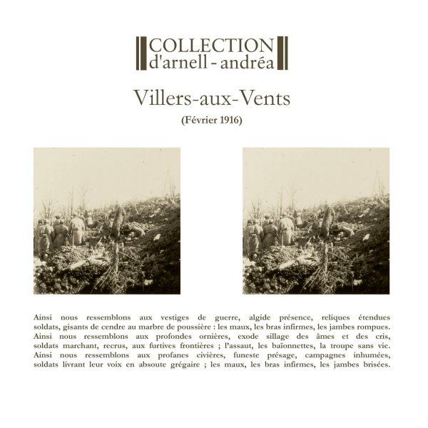 "Collection D'Arnell-Andrea ""Villers-Aux-Vents"""